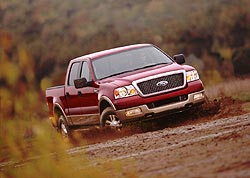 2004 Ford F-150 in the mud