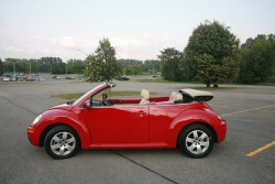 2007 VW New Beetle Conv.