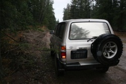 1990 HDJ81 Toyota Land Cruiser