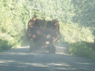 Huge logging trucks take up most of the road, and they have the legal right, of way, coming or going.  Pass with care!