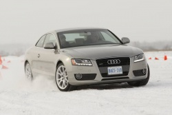 First Drive: 2009 Audi Q7 TDI diesel  first drives diesel audi
