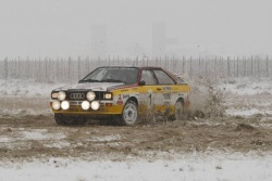 The Mouton/Pons quattro rally car