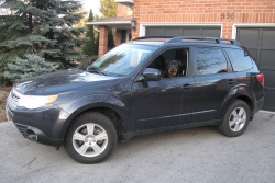 Test Drive: 2012 Subaru Forester reviews