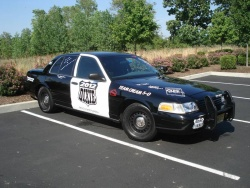 Team Cream #911.5 – Ford Crown Victoria