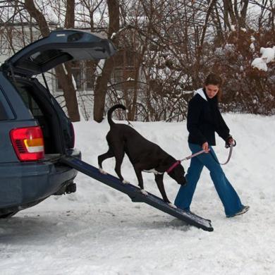 Pet Gear foldable ramp