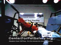 Center for Pet Safety Harness Test