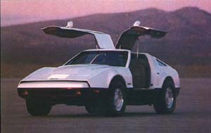 Bricklin - courtesy Bricklin International - www.bricklin.org
