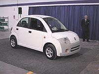 Dynasty IT low speed electric vehicle
