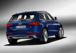 Audi SQ5 TDI/Standaufnahme